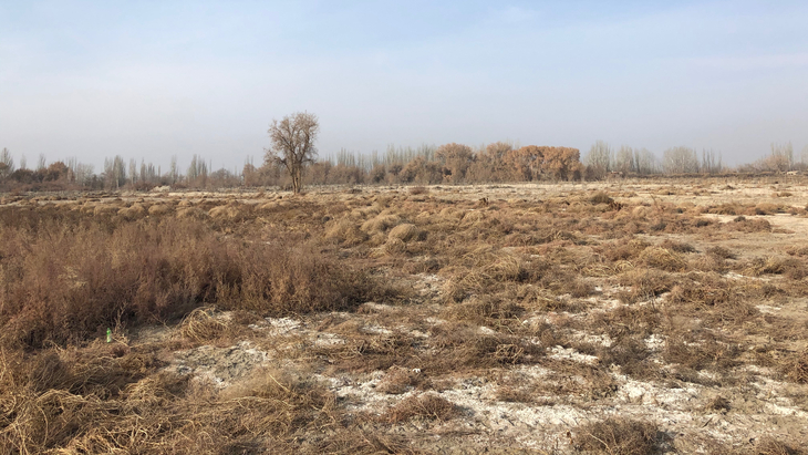 图片默认标题_fororder_The old graveyard where Aziz's father had been buried in Xayar County, northwest China's Xinjiang Uygur Autonomous Region, January 8, 2020.CGTN Photo