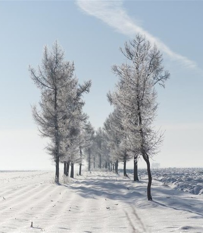 Winter scenery in Heilongjiang Province