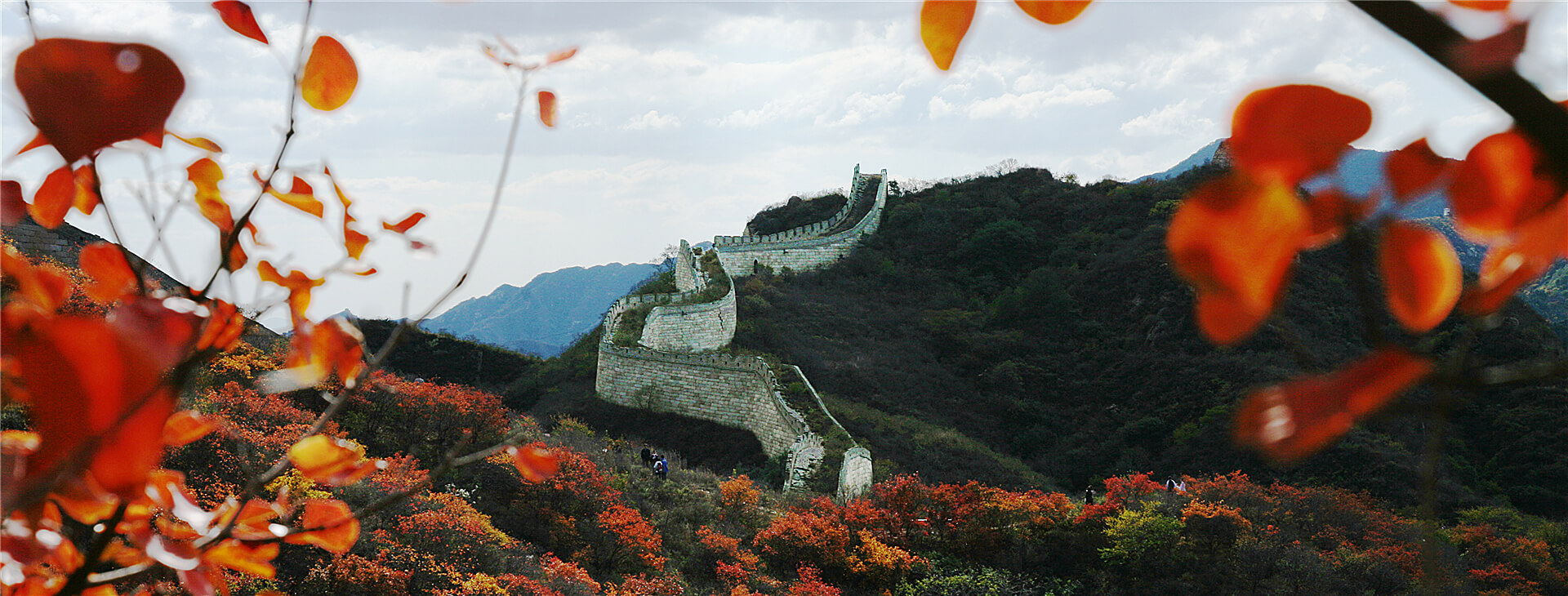 The Great Wall and red leaves_fororder_長城紅葉郭東亮 _副本