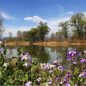 The impression on Yanqing: Dragon Lakes