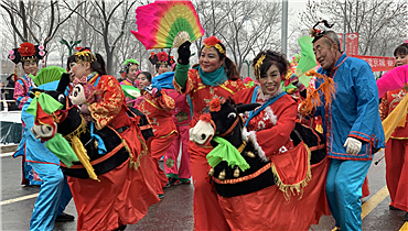 Yanqing 2019 Lantern Festival Flower Fair was launched_fororder_5_副本