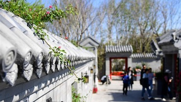 """""""Beijing Day"""" event held at Int'l Horticultural Exhibition 2019 Beijing"""