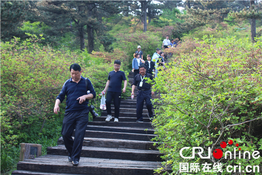 Domestic and overseas experts visited Mt. Turtle in Huanggang Dabieshan Geo-park