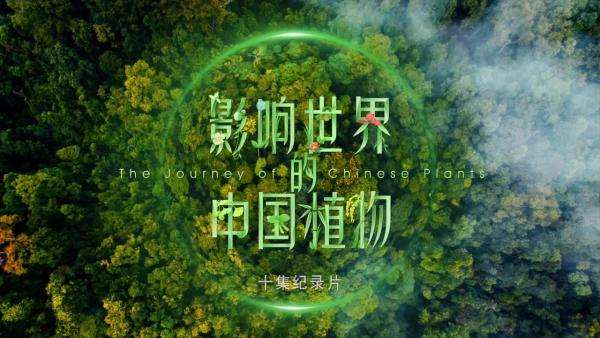 The first botanical documentary to be released during Beijing Expo 2019_fororder_2