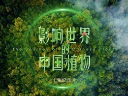 The first botanical documentary to be released during Beijing Expo 2019