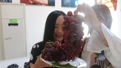 The 3rd Yanhuai Valley Grape Culture Festival kicked off in Beijing