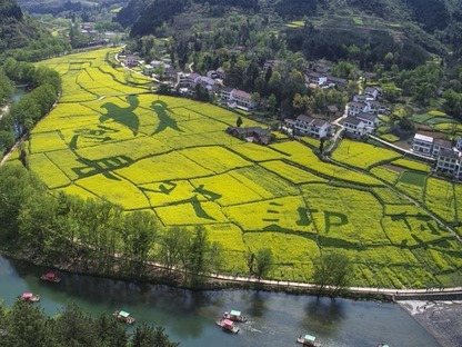 Spring flower season boosts tourism industry in Hanzhong, NW China