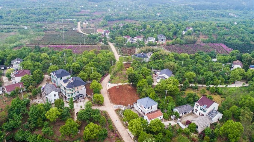 Rural living environment greatly improved in Zhejiang, east China