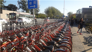 [Beijing in International Friends' Eyes] Shared bicycles on the road_fororder_1_副本1