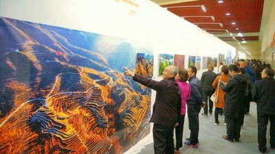 The City of Swan - The 3rd China Sanmenxia Natural Ecology International Photography Exhibition kicked off