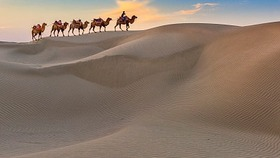 Silk Road project lauded by media