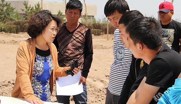【中国梦实践者】林琪:玄武岩上造园林 大地上书写绿化梦