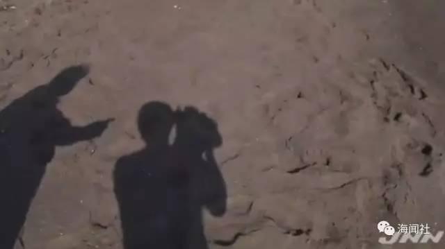 最新消息!日本海岸发现的女子遗体死因确定,她真的是危秋洁吗?