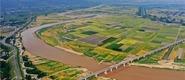 陕西渭南:小满将至 关中平原田园美