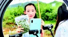 """贵州:""""网红""""直播带货 为德江花椒代言"""