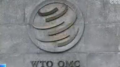 世贸组织新总干事提名结束8人参与角逐