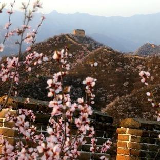 北京:春到古长城