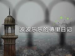 【龙象】波波乐乐的德里日记